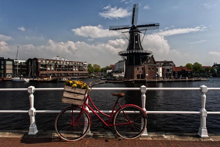 Olanda, HAARLEM: Il mio mulino preferito