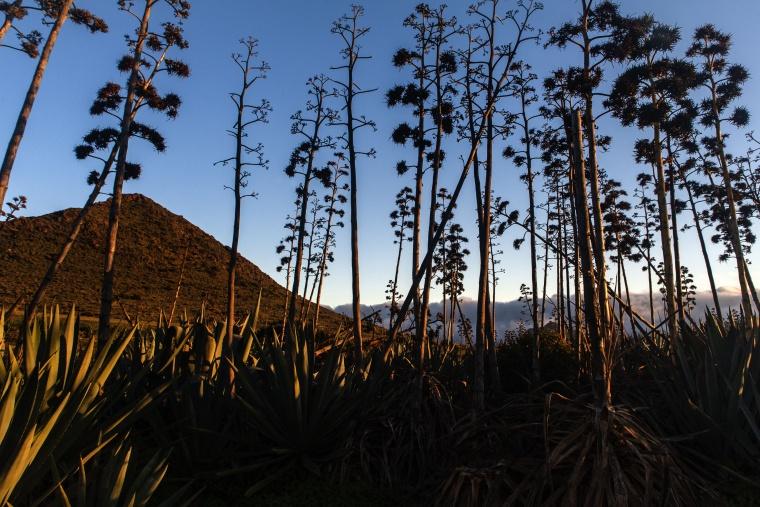 Spagna, PARCO NATURALE CABO DE GATA - NIJAR: Brindisi con lo yogurt da bere al tramonto