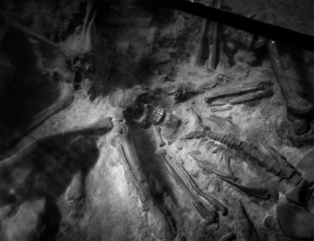 Pompei, Sarno: morte improvvisa e resurrezione